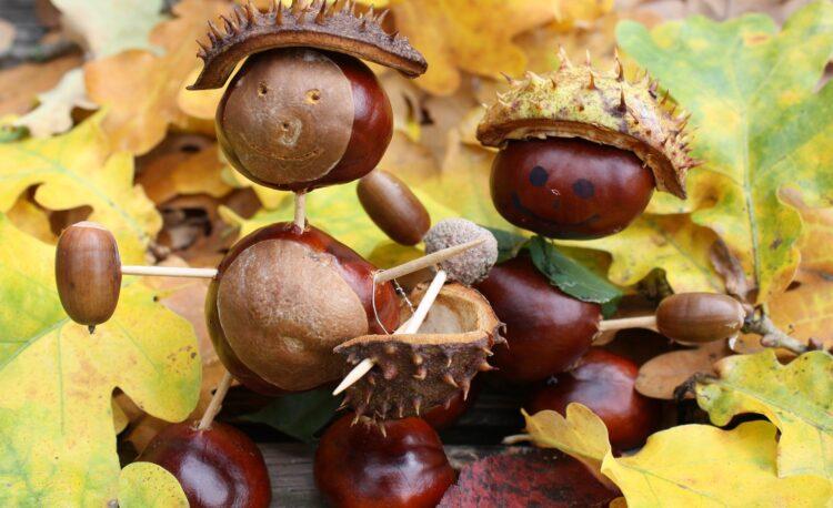 Symbolbild Herbstbasteln